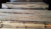 Kiln dried unconditional ash wood slabs